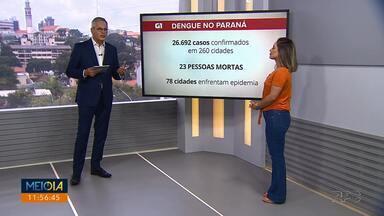 Casos de dengue não param de aumentar no Paraná - Cidades paranaenses já registram quadro de epidemia.