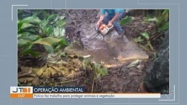Operação da Polícia Ambiental em Iguape combate a caça de animais - Polícia faz trabalho para preservar animais e vegetação.