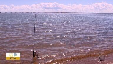 Época da Piracema acaba nesta mês e alivia pescadores - Muitos profissionais ainda não receberam o seguro defeso.