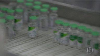 Governo antecipa campanha de vacinação contra a gripe - Ministério da Saúde afirma que a vacinação vai auxiliar profissionais na triagem de pacientes e acelerar o eventual diagnóstico do novo coronavírus.