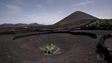 Forma de plantar uvas em Lanzarote, nas Ilhas Canárias, é única no mundo - Produtores abrem covas no solo, formado por pedriscos vulcânicos chamados de picon. A composição do solo e a pouca umidade afetam as uvas, que ficam com um perfume mais concentrado.