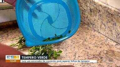 A Dica é: Lucy usa escorredor de macarrão para separar folhas de tempero - undefined