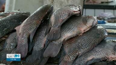 Procura por peixe nos mercados é grande em Petrolina - O prato é tradicional na sexta-feira santa