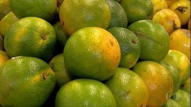 Procura por laranja aumenta 30% no início de abril por conta do coronavírus - Rica em vitamina C, fruta é associada no combate à gripe e aumento da resistência. Vale lembrar que não existe estudo científico que comprove a eficiência da laranja na cura da Covid-19.