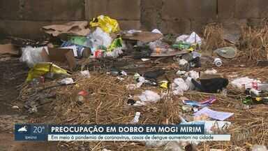 Em meio à pandemia de coronavírus, casos de dengue aumentam em Mogi Mirim - Cidade está em situação de emergência. Apenas neste ano, município registrou 1,7 mil casos confirmados e uma morte provocada pela doença transmitida pelo mosquito Aedes aegypti.