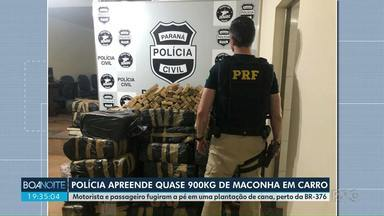 Denarc e PRF apreendem quase 900 kg de maconha - Traficantes fugiram em um matagal.