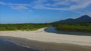 Globo Repórter - Serra do Mar - 24/04/2020 - Serra do Mar, a maior e mais preservada área da Mata Atlântica do Brasil, é tema do programa desta sexta.