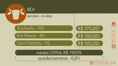 Confira os preços do boi gordo - Média CEPEA de preços do estado de São Paulo fechou em R$199,95, uma queda de 0,8% na semana.