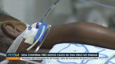 Secretária de Saúde confirma três novos casos de Zika Vírus no Paraná - Gestante de 30 anos é um dos pacientes. Ela está no primeiro trimestre da gestação.