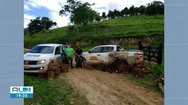 Operação apreende pássaros e armadilhas em Joaquim Gomes e União dos Palmares - Fiscais do ICM-BIO e do IMA participaram da ação.
