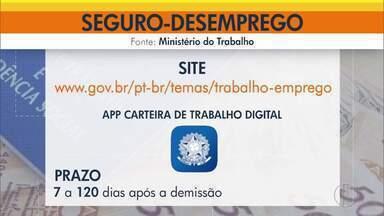 Veja como fazer para dar entrada no seguro-desemprego - Trabalhadores demitidos só podem dar entrada no pedido via internet.