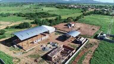 Cultivo de algodão vira fonte de renda para produtores rurais, em Catuti - Criação de um Centro de Difusão de Tecnologias Algodoeiras, está sendo feito para facilitar o trabalho dos produtores.