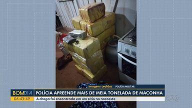 Polícia apreende mais de meia tonelada de maconha - A droga foi encontrada em um sítio. Teve perseguição com e uma pessoa acabou morta.