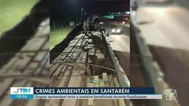 Duas apreensões de madeira foram realizadas no fim de semana em Santarém - Madeira em toras foram apreendidas na PA-370 e madeira beneficiada na BR-163.