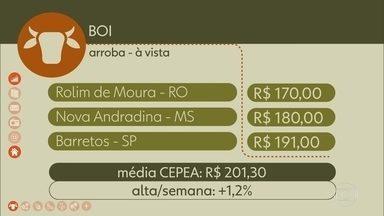 Confira os preços do Boi Gordo - A média CEPEA de preços fechou em R$ 201,30. Alta de 1,2% na semana.