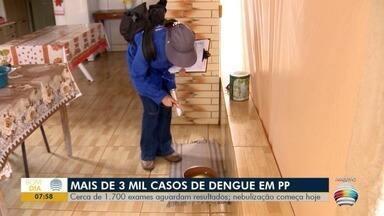 Presidente Prudente tem mais de 3 mil casos confirmados de dengue - Ações de nebulização devem ser realizadas na cidade.
