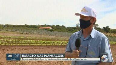 Produtores de hortaliças da região de Campinas registram queda de 50% nas vendas - Os restaurantes são os principais consumidores do produto e com a determinação do fechamento do comércio, donos de plantações sentem o impacto no final do mês.