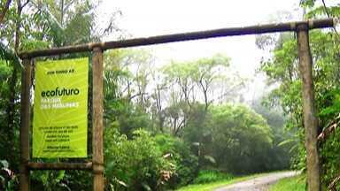 Parque das Neblinas, em Mogi das Cruzes, oferece visita virtual - O paraíso ecológico do Alto Tietê oferece aos visitantes um passeio com realidade virtual para aproveitar a natureza.