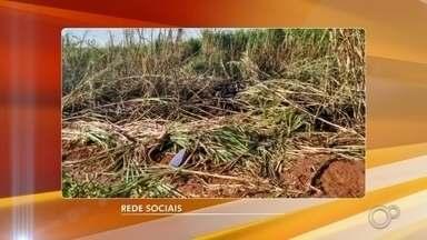 Aeronave cai em plantação de cana e ocupantes são socorridos com fraturas e queimaduras - Duas pessoas ficaram feridas depois que uma aeronave caiu na área rural entre Macatuba e Pederneiras (SP) neste domingo (17).