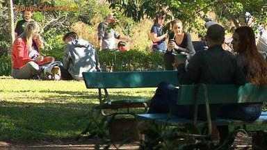 Parques e Orla do Guaíba de Porto Alegre registram aglomerações neste domingo (17) - Moradores descumpriram recomendações de isolamento social e uso obrigatório das máscaras.