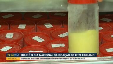 Dia nacional da doação de leite humano - Paraná é o estado com maior número de doações do sul do Brasil.