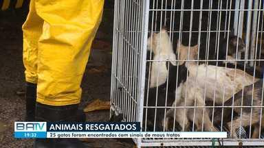 Destaques do dia: animais são encontrados em situação de maus tratos, em Camaçari - Confira este e outros destaques desta terça-feira (19).