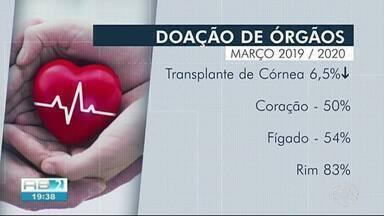 Pernambuco tem queda na doação de órgãos - Diminuição é relacionada ao novo coronavírus.