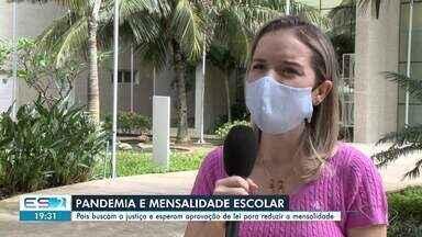 Pais buscam a justiça e esperam aprovação de lei para reduzir a mensalidade no ES - Escolas estão fechadas durante pandemia do novo coronavírus.