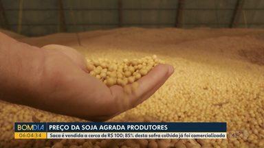 Preço da soja agrada produtores do Paraná - Saca é vendida a cerca de R$ 100,00. 85% desta safra colhida já foi comercializada.
