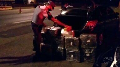 Polícia Rodoviária apreende mais de 200 kg de maconha com motorista em Assis - Apreensão foi feita na Rodovia Raposo Tavares durante fiscalização de rotina. Motorista de 33 anos foi preso e levado para Central de Polícia Judiciária.