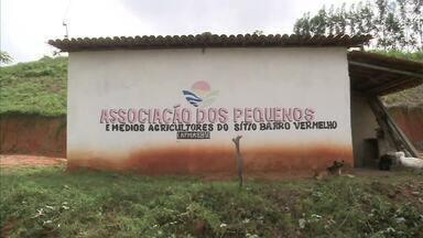 Agricultores da cidade de Flexeiras melhoraram condições de produção - Para isso, eles criaram uma associação.