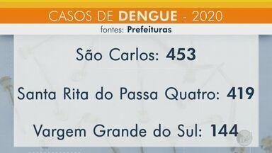 Cidades da região de São Carlos confirmam aumento nos casos de dengue - Dados foram obtidos na semana passada.