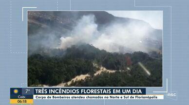 Bombeiros atendem três incêndios florestais em Florianópolis nesta quarta-feira - Bombeiros atendem três incêndios florestais em Florianópolis nesta quarta-feira