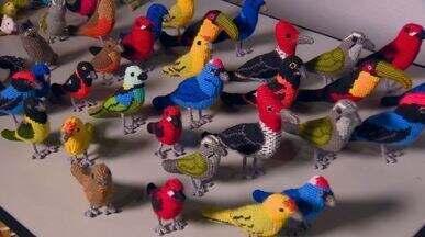 Bordadeiras fazem obras de arte com aves do Parque Nacional do Caparaó - O artesanato fez tanto sucesso que as aves se transformam em chaveiros, bolsas, carteiras, quadros e, principalmente, em miniaturas. Tudo com a ajuda dos pontos do bordado.