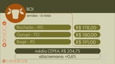 Confira os preços do boi gordo na semana - Média CEPEA fechou a semana em leve alta.