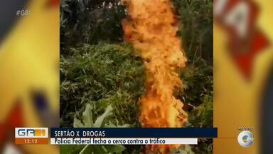 Chefe da Polícia Federal em Salgueiro fala das apreensões de drogas realizadas na região - O balanço da Polícia Federal é positivo.