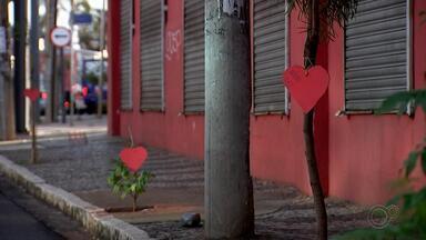 Árvores de avenida de Rio Preto recebem corações para celebrar o amor e o meio ambiente - São José do Rio Preto (SP) está no clima do Dia dos Namorados nesta sexta-feira (12), e também fazendo os moradores lembrarem da importância de cuidar do meio ambiente.