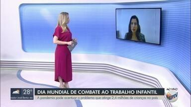 Pandemia pode acentuar problema de trabalho infantil - 2,4 milhões de crianças estão nesta situação no Brasil