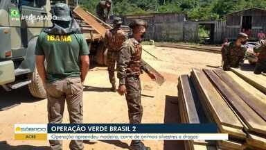 Operação Verde Brasil 2 é deflagrada no Acre - Operação apreendeu madeira, carne de animais silvestres e drogas