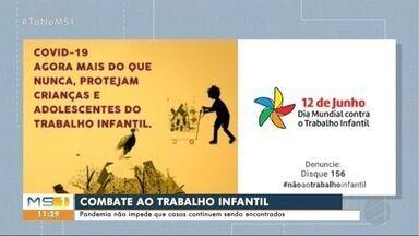 Pandemia não impede que casos de trabalho infantil continuem a ser combatidos - Pandemia não impede que casos de trabalho infantil continuem a ser combatidos
