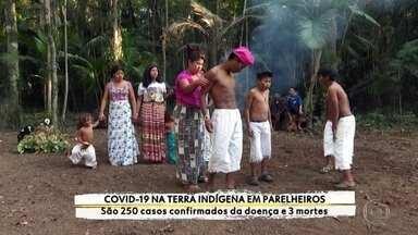 Cinco indígenas de aldeia em Guarulhos testam positivo para Covid-19 - Os indígenas que vivem no extremo sul da capital transformaram duas escolas em abrigos para isolar os infectados pelo novo coronavírus porque, por lá, também tem casos da doença.