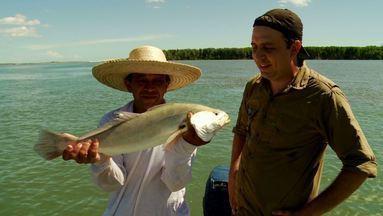 Linhada de mão é técnica usada em pescaria na Ilha das Canárias (MA) - Boas histórias e grandes fisgadas agitam a pesca na divisa do Maranhão com o Piauí.