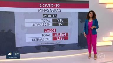 Veja os números da Covid-19 em Minas Gerais - Estado já tem mais de 43 mil casos da doença.
