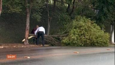 Ventos fortes causam estragos em várias cidades de SP - Os maiores problemas foram registrados no litoral e no sudoeste do estado.
