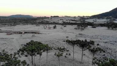 Serra Catarinense tem o dia mais frio de 2020 no país, nesta quarta (15) - O termômetro baixou em Urupema, com -8,1° C, a mínima registrada em 2020 no Brasil.
