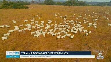 Prazo para declaração de rebanhos junto à Idaron terminou hoje em RO - Mais de 90% dos pecuaristas aderiram a declaração