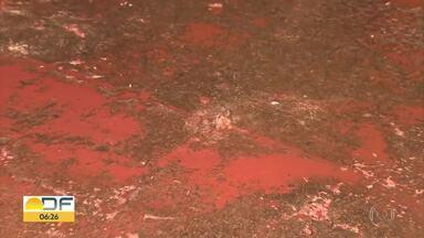 Água sai por rachaduras em calçada na Asa Norte - Caesb mandou equipe para consertar vazamento na 303 norte.