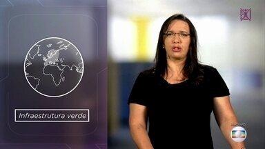 Projeto Educação: professora dá dicas de estudo de geografia para Enem - Carla Gonçalves orienta alunos sobre fenômenos importantes estudados pela disciplina