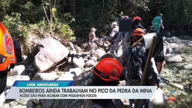 Bombeiros identificam focos de fumaça e mantêm trabalho no pico mais alto de SP - Chamas começaram na última quinta-feira (16), em Minas Gerais, e invadiram a área paulista no dia seguinte.