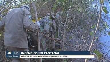 Queimadas avançam no Pantanal e Forças Armadas chegam para ajudar - Pantanal